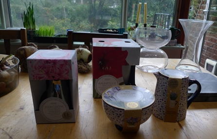 Marks and Spencer bulb forcing gifts
