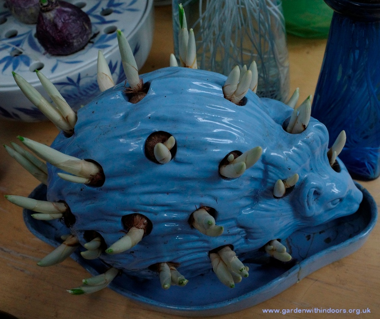 Wedgwood hedgehog