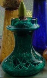 squat teal hyacinth vase