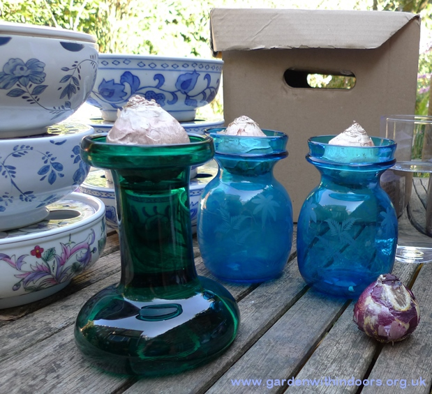 hyacinth vases and bulb bowls
