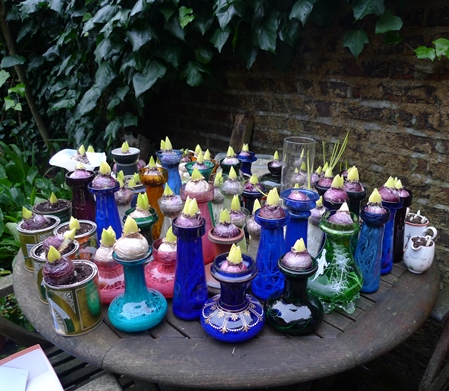 hyacinth vases out of the cellar